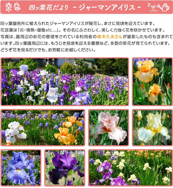 oshirase_popup_190517.jpg