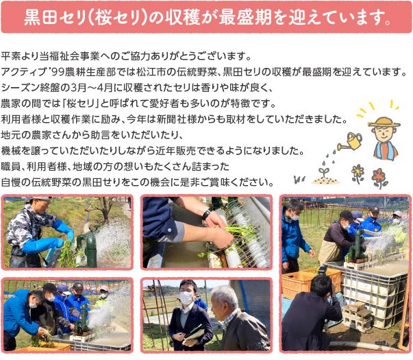 oshirase_popup_210406.jpg